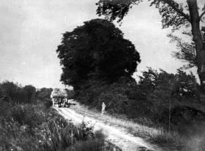1931 Hambridge Way