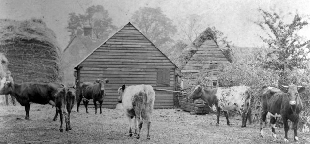 It used to be a farm run by the Burton family