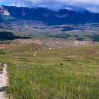 trekking no Monte Roraima