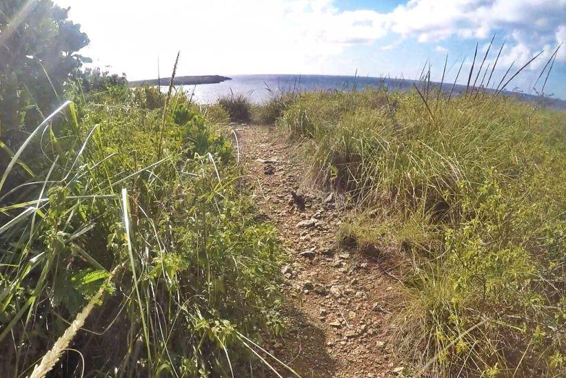 Trail Vieques