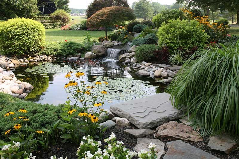 comment installer un bassin dans son jardin