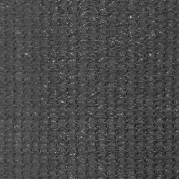 vidaXL Jaluzea de exterior 100 x 230 cm, antracit