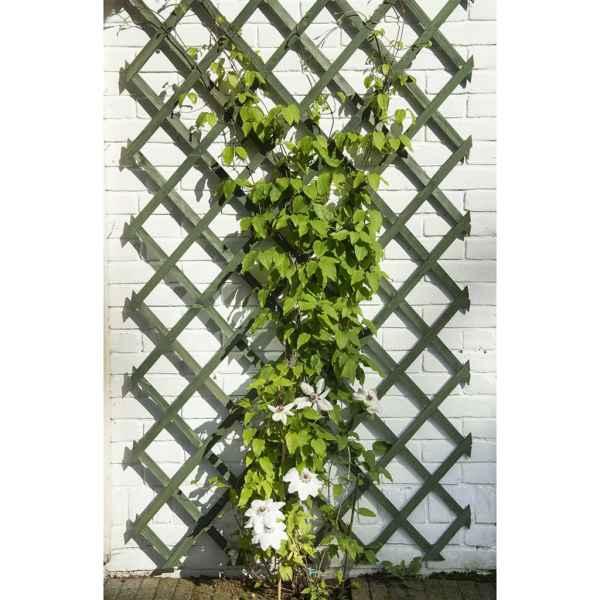 Nature Spaliere de grădină, 2 buc., verde, 50 x 150 cm, lemn
