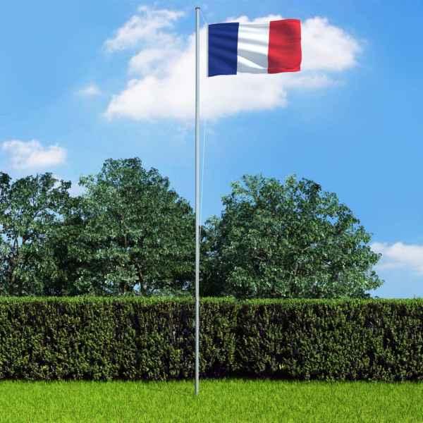 vidaXL Steag Franța, 90 x 150 cm