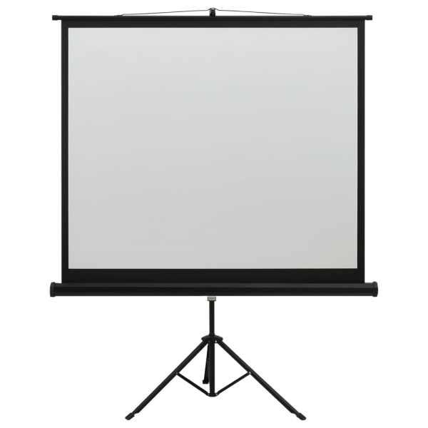 Ecran de proiecție cu suport 60″ 1:1