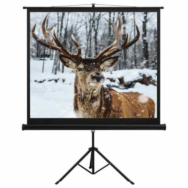 vidaXL Ecran de proiecție cu suport 60″ 1:1
