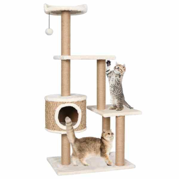 vidaXL Ansamblu pentru pisici cu stâlp de zgâriat 123 cm iarbă de mare