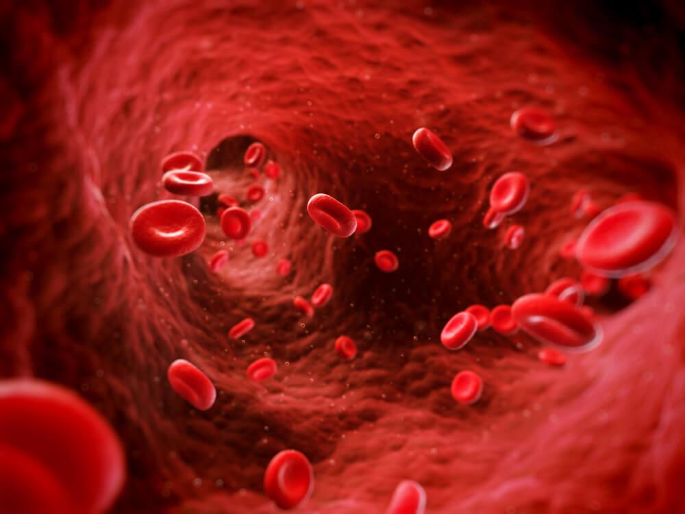 Почему рвет кровью