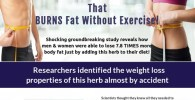 Turmaslim – Clinically Proven Fat Burner & Weight Loss Supplement