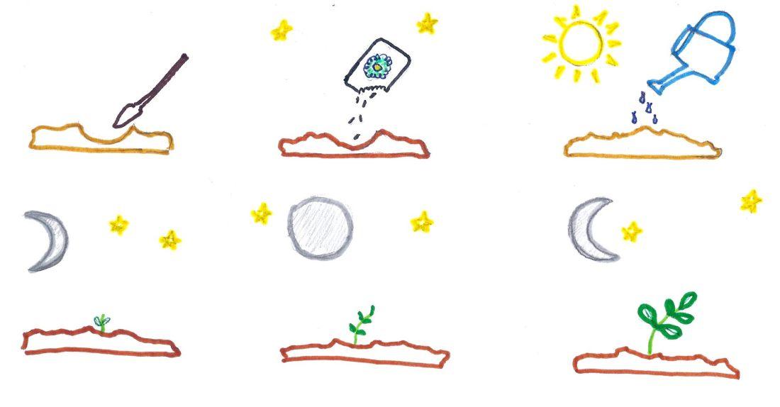 ciclos de la naturaleza