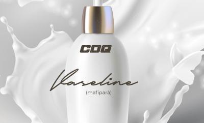 CDQ Vaseline Mafipara