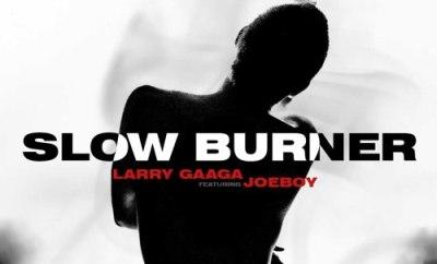 Larry Gaaga Slow Burner ft Joeboy mp3 download