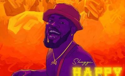Broda Shaggi Happy Day mp3 download