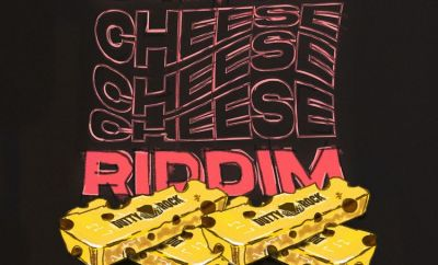Various Artists Swiss Cheese Riddim album