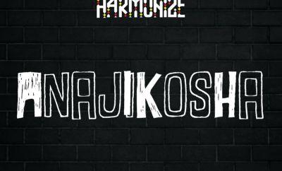 Harmonize Anajikosha mp3 download