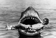 O jovem Steven Spielberg durante as filmagens do filme Tubarão, 1974.