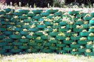 Reutilização de pneus - jardim vertical feito com pneus