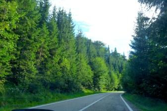 North of Romania, Bucovina