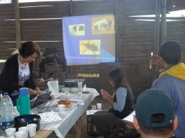 Figura 3. Presentación de alternativas de control: hongos entomopatógenos (2º jornada)