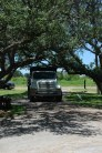 Truck under Trees (1)