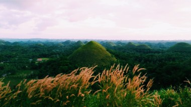 View of Chocolate Hills