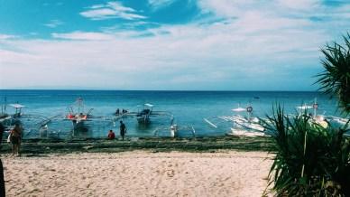 Shore at Balicasag Island