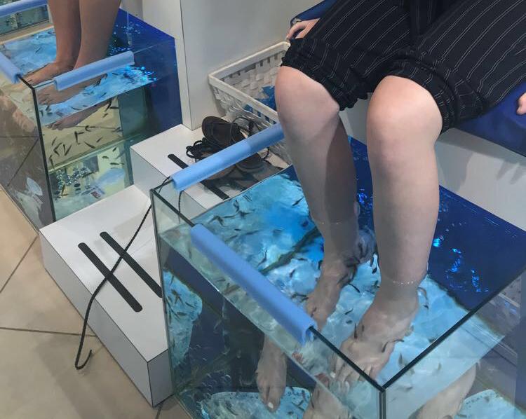 fish-pedicure.jpg
