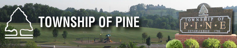 History of Pine Township