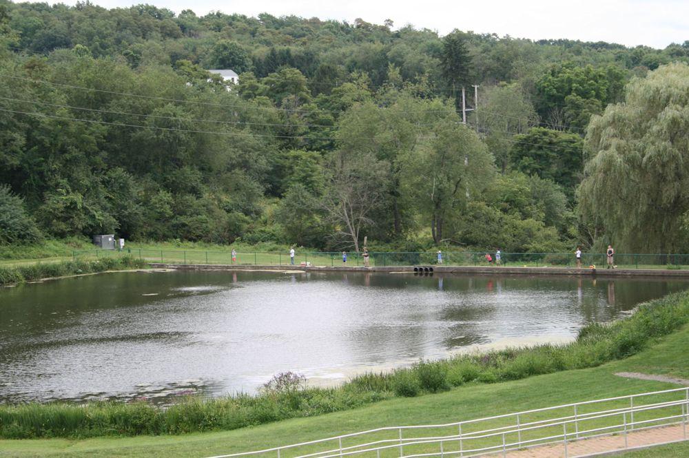 Pine Township