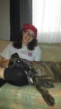 Molly Pittsburgh Great Dane (6)