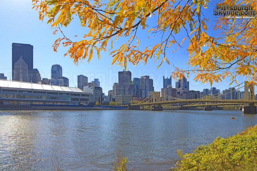Orange and Yellow leaves along the Allegheny River
