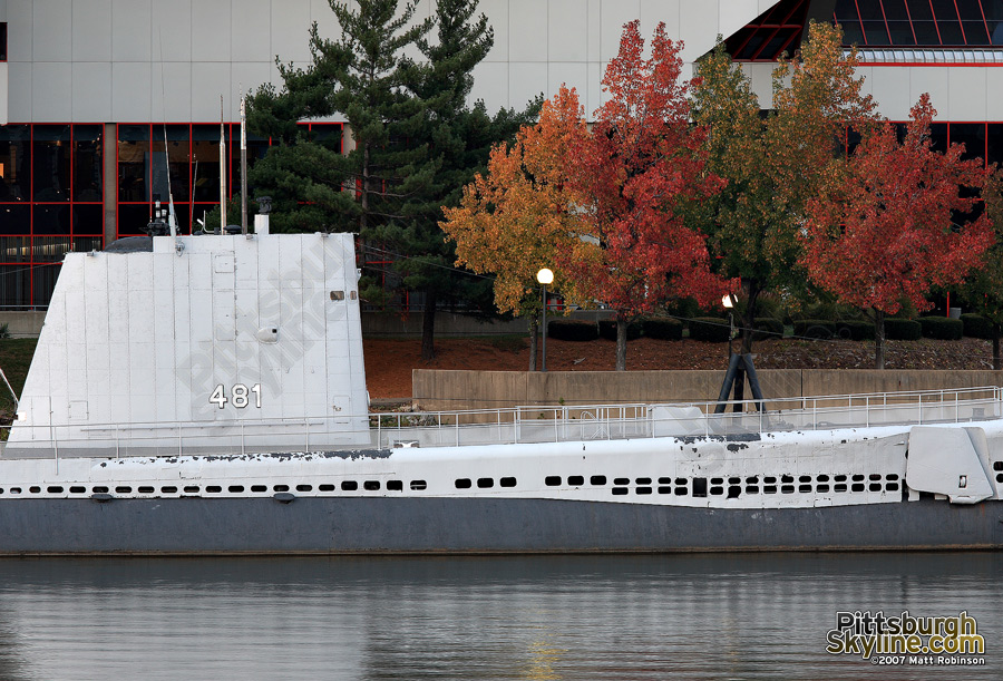 Changing trees complement the USS Requin
