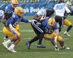 Mike Caprara with the tackle on Shaun Wilson (Photo by: David Hague)