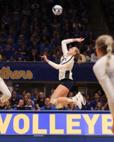 Jonni Parker (9) for Penn State Volleyball September 22, 2019 -- David Hague/PSN