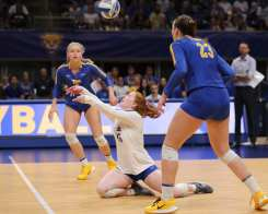 Hali Hillegas (16) for Pitt Volleyball September 22, 2019 -- David Hague/PSN