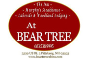 BearTree