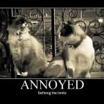 Annoyed? You bet I am.