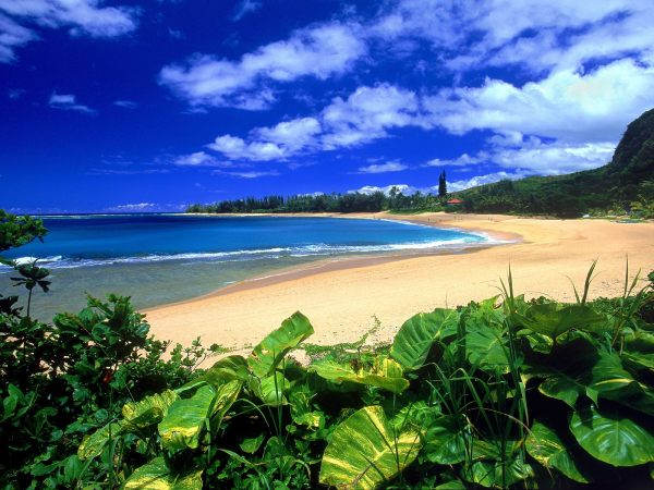 Kauai Hawaii Beaches