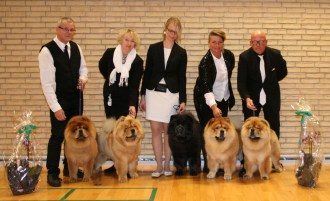 Piuk Chow Best Breeders Group 2015
