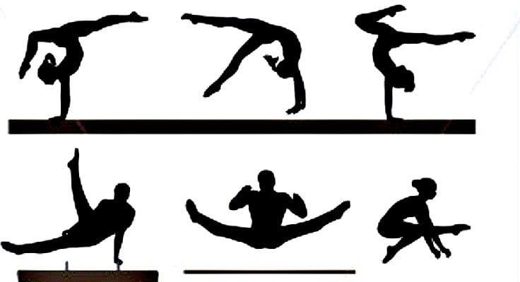 Gymnastics Display