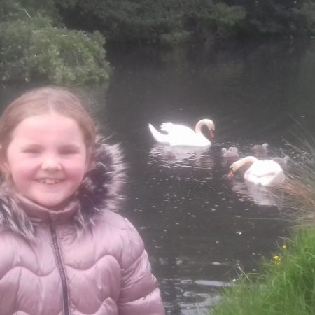 """Emma 1st Ms Ward """"I was very excited to see the cygnets having a swim with their Mum & Dad"""""""
