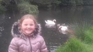 "Emma 1st Ms Ward ""I was very excited to see the cygnets having a swim with their Mum & Dad"""