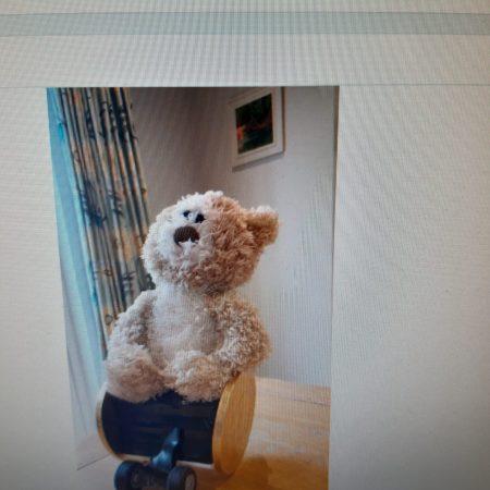 Jessica - teddy bear wheelchair