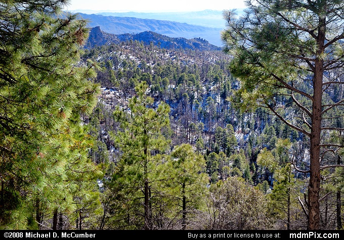 Mount Lemmon Picture 053  December 21 2008 from