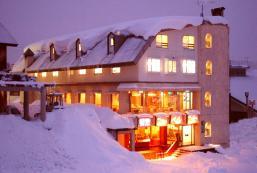 新巴露尼納酒店 Hotel New Barunina