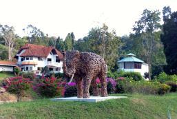 南谷度假村 Nan Valley Resort
