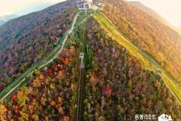 龍平別墅度假村公寓 Yongpyong Resort Villa Condo
