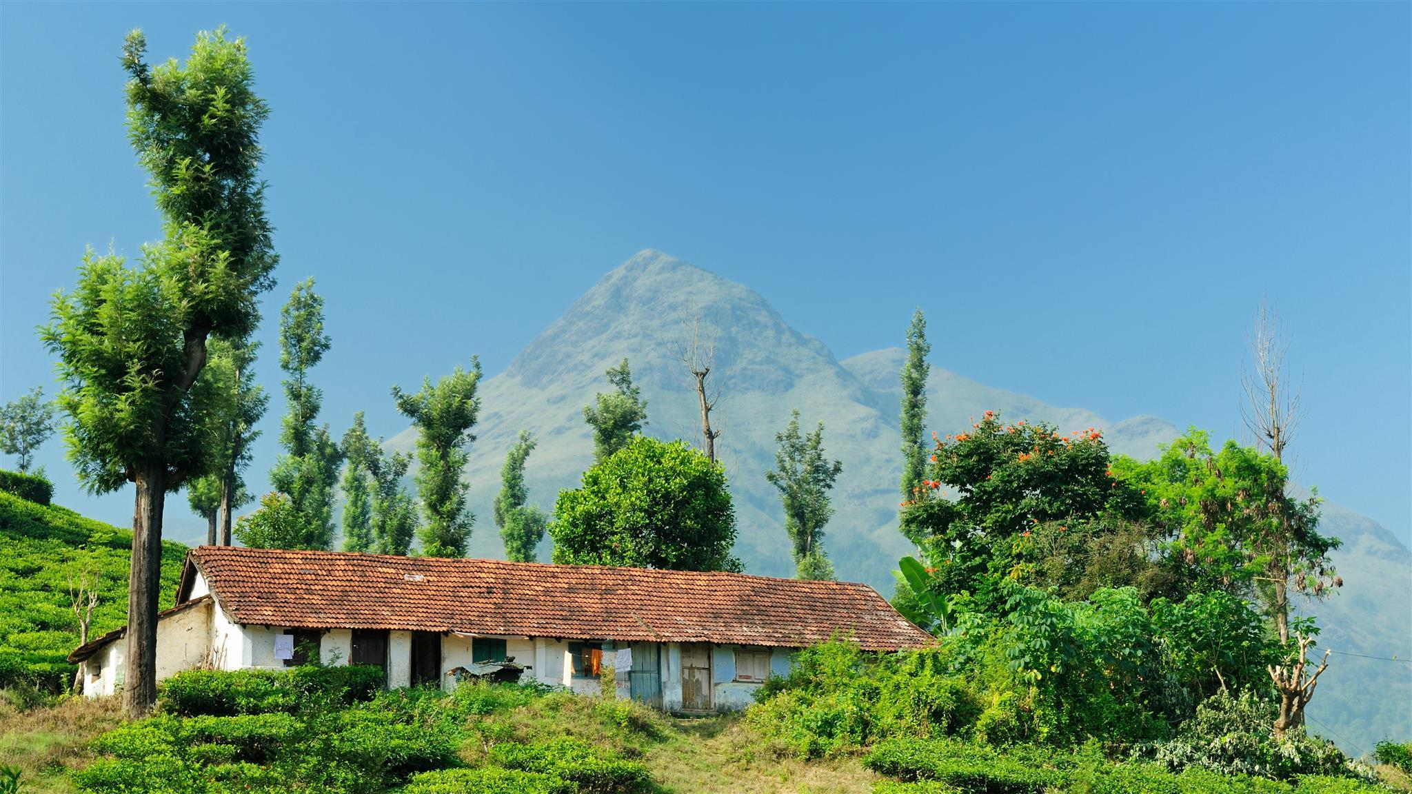 10 Best Wayanad Hotels Hd Pictures Reviews Of Hotels In