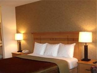 Best Western Plus Pleasanton Inn Pleasanton Ca Room