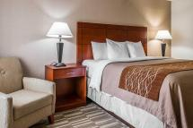 Comfort Inn And Suites University South Ann Arbor In